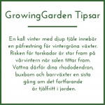 GrowingGardenTipsar_5