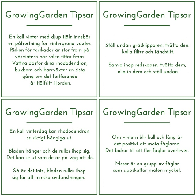 Tips5-8